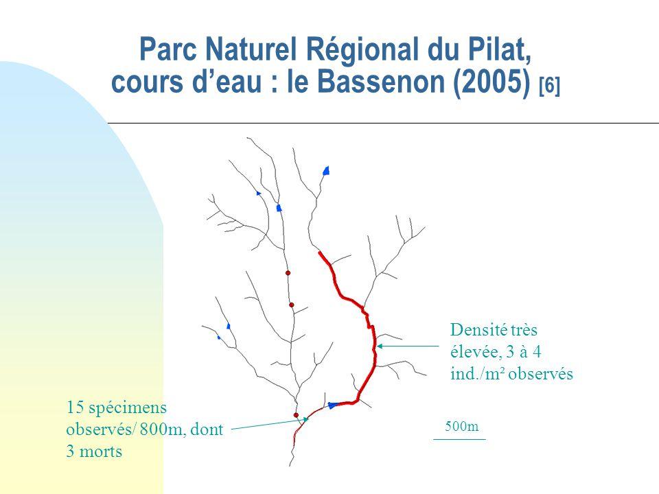 Parc Naturel Régional du Pilat, cours d'eau : le Bassenon (2005) [6]